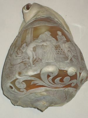 """Cameo Seashell, Antique, Hand Carved, very rare """"One of a Kind Carving,"""" item"""