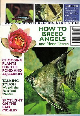 Fishkeeping Answers Magazine May 1995 Breed Angels Neon Tetras Plants Herptiles