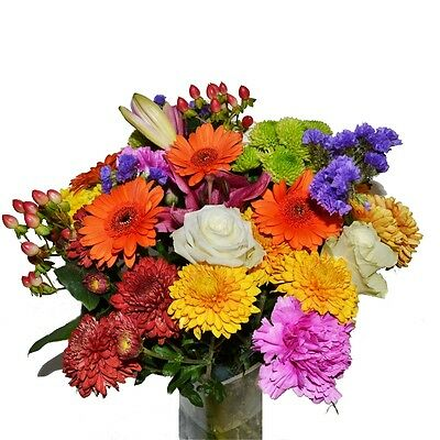 Florist Choice Bouquet Fresh Flowers Nationwide Delivery Personalised Message