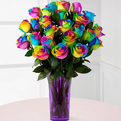 6 Rainbow Roses Fresh Flowers Delivered Nationwide Personalised Message