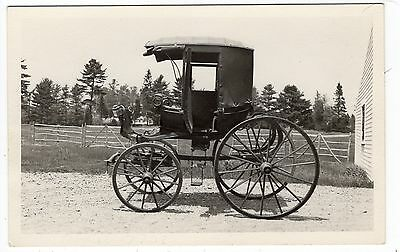 Early Carriage Cart American Buggy Old Photo Postcard