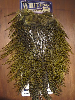 Fly Tying Whiting American Rooster Saddle Grizzly dyed Dark Olive #A
