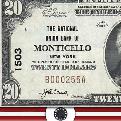 1929 $20 National Bank Note MONTICELLO NY SULLIVAN COUNTY NB Bill  B000255A
