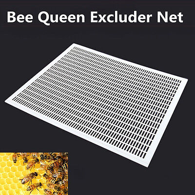 Frame Bee Queen Excluder Trapping Net Grid Beekeeping Tool Equipment DIY TOP