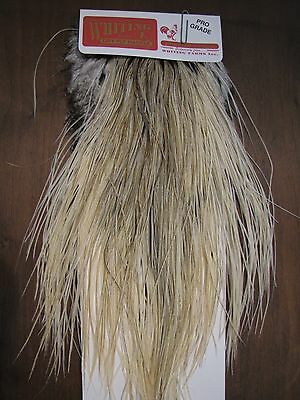 Fly Tying Whiting Pro Rooster Midge Saddle Unique Variant #A