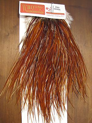 Fly Tying Whiting Pro Rooster Midge Saddle Brown #A