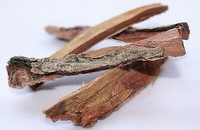 20g TANTORA INDIAN ALMOND CATAPPA BARK for Crystal Red Cherry Shrimp Nano Tank