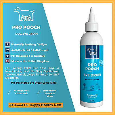 Dogs Eye Drops for Conjunctivitis, Allergies, Stinging, Itching Eyes