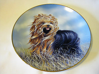 """Danbury Mint Yorkshire Terrier Dog Collector Plate Dish """"Windswept""""  8 1/4"""""""