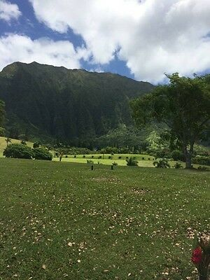 Hawaii Cemetery plots Valley Of The Temple Memorial  Kaneohe Oahu $6300 Value 3