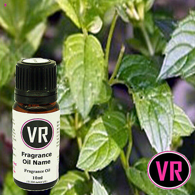 10ml PEPPERMINT Fragrance Oil Home Fragrance Candles Soap Incens