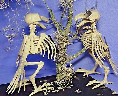 Halloween Skeleton Crow Raven Moss Scary Haunted House Prop Party Decoration #