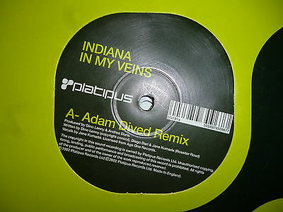 "Indiana - In My Veins - Platipus - 2002 12"" vinyl"