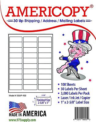 "Americopy by Ace 6,000 1"" x 2 5/8"" Mailing Labels Uses 30 Up 2 PACKS OF 3,000"