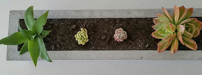 Garden Pots: NEW 90cm Lite Weight Concrete herb, cactus planter box