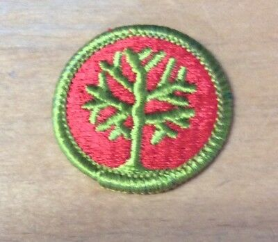 Boy Scouts Genealogy Merit Badge Type H  New