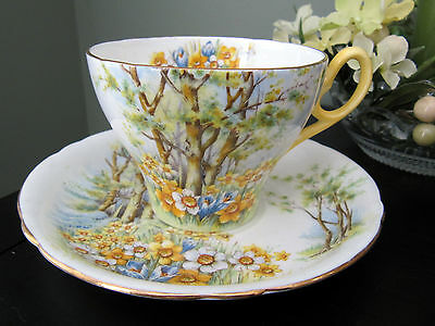 """Vintage Shelley Cup and Saucer, """"Daffodil Time No. 823343"""""""