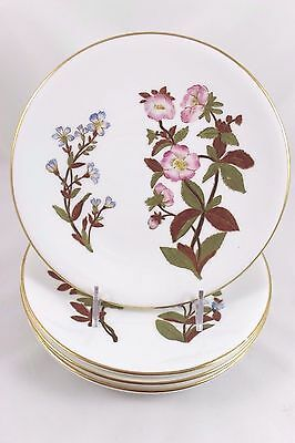 Set 5 Antique Side Plate Antique Hand Painted Floral Royal Worcester China W1701