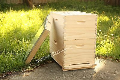Assembled Bee Hive With Frames - Nz Pine Beehive With Foundation Ready To Go