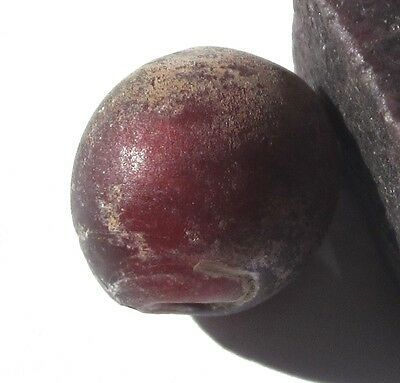 Rare Amazing Old Cranberry Red Venetian White Heart Columbia River Trade Bead