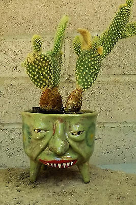 SMALL TOOTHY PLANTER - FACE JUG for plants