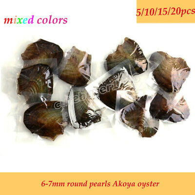 5/10/15/20PCS individually Wrapped Bulk Akoya Oysters with Large Pearls Round