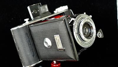 Agfa Billy Record II 6x9 folder -new RED Bellows & SOLINAR lens & CLA'd