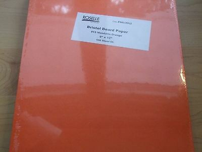 Bristol Board Paper Bright Orange 9 x12 100 count NEW in Package #15