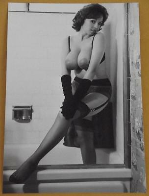 Busty Nude Pinup Model 4x6 Photo Busty 1950s Print A82