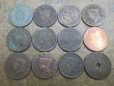 Lot of 12 United States Large Cents in Poor Condition No Reserve