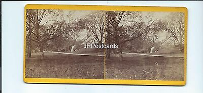 Vintage Stereoview ~ Newstead Abbey grounds