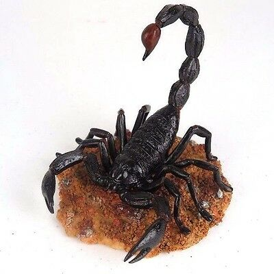 "Large Scorpion Detailed Collectible Figurine Miniature Statue 4.5""H New in Box"