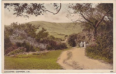 View On The Common, LUCCOMBE, Isle Of Wight