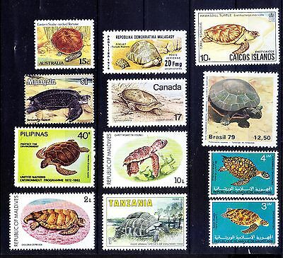 Turtles, Lot of 12 MNH Stamps, Marine Life -T3