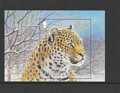 Guernsey - Endangered Species (5th Series) Amur Leopard £3.00 mini sheet MNH