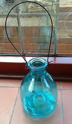 Vintage Glass Wasp/Fly Catcher