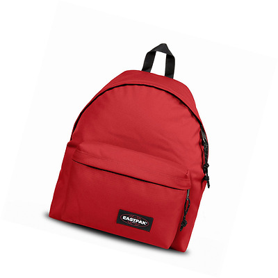 Eastpak AUTHENTIC Zaino Casual, 40 cm, 24 liters, Rosso (Apple Pick Red)