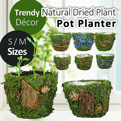 S/M Natural Dried Plant Pot Flower Planter Holder Countryside Vintage Garden