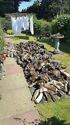 Large Selection Of  Logs For Sale