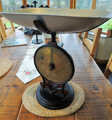 Heavy trade vintage SALTER SCALES Spring Balance Cast Iron No.50 T 20lbs / 1oz