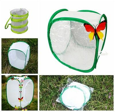 Butterfly Cage Praying Mantis Stick Insect Housing Enclosure YLM9070-1
