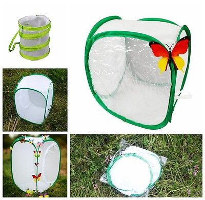 Butterfly Pop-up Cage Praying Mantis Stick Insect Housing Enclosure YLM9070-1
