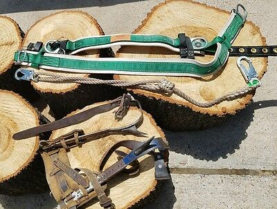 Buckingham Pole Tree Climbing Cut Harness Belt Spikes Lineman Arborist  Logger
