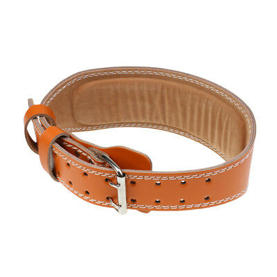 Leather Gym Weight Lifting Belt Leather Lumbar Back Support Power Training L
