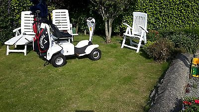 Grasshopper Junior buggy in excellent condition includes very good batteries