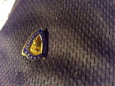 Vintage Canadian Daughters League Pin