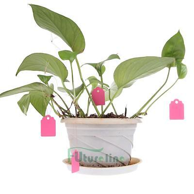 100Pcs T-type Plastic Nursery Garden Plant Label Flower Tag Mark AU