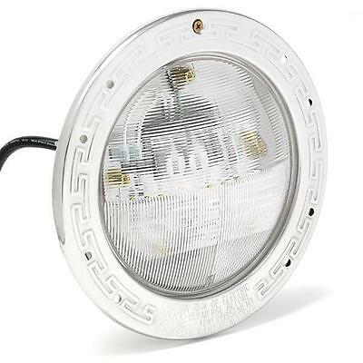 601100 Pentair IntelliBrite 5G White LED 120V, 40W, 30' w/ Face Ring Pool Light