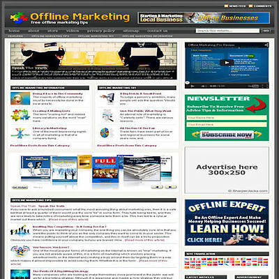 Established 'MARKETING' Affiliate Website Turnkey Business (FREE HOSTING)