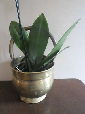 Vintage French round brass planter cauldron with hanging handle